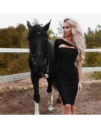 Obleka - koda 955 - črna